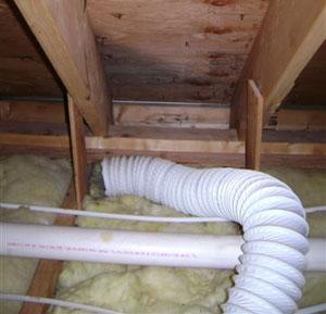 Attic Mold Prevention Attic Mold Removal